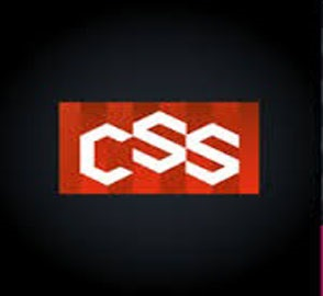 CSS Course in Nagercoil